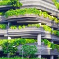 Nature-based solutions at the Urban Sustainability Webinar
